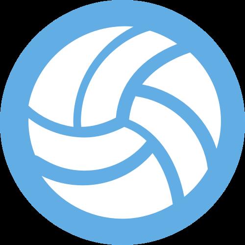 Vball Icon